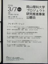 公聴会(H30)
